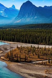 1080x2160 Forest Landscape Mountain Nature River Scenic 4k
