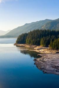 Forest Landscape Nature Reflection 5k