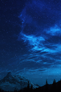 1080x1920 Forest Stars Mountains Night 5k
