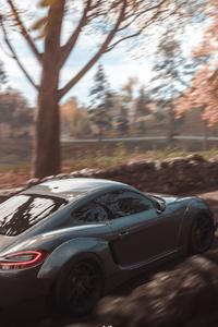 2160x3840 Forza Horizon 4 Porsche 911 Cayman 4k