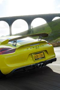 Forza Horizon 4 Porsche Gt4