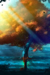 Fox Abstract Sunbeam Hd