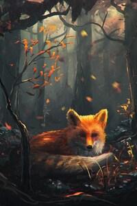 720x1280 Fox Art