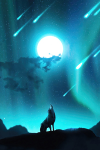 1242x2688 Fox Howling Night Stars 4k