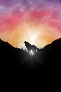 720x1280 Fox Howling Sunrise 5k