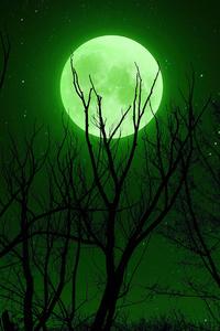Full Moon Green 5k