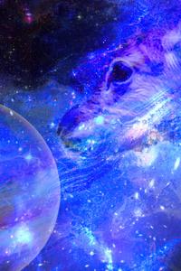 Galaxy Deer 5k
