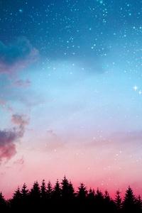 1080x2280 Galaxy Stars Lights Forest Night 5k