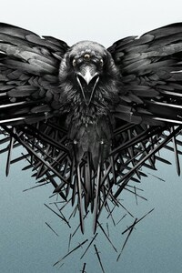 2160x3840 Game Of Thrones Raven