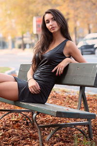 360x640 Gir Sitting Bench Autumn 4k