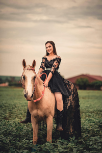 1440x2560 Girl On Horse