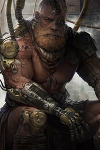 1125x2436 Gladiator King Leo 4k