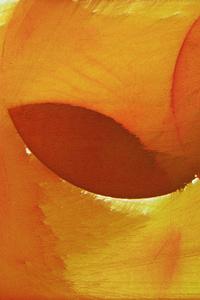 360x640 Glitch Art Abstract Yellow 4k