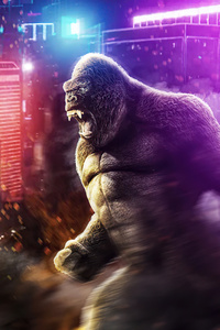 720x1280 Godzilla Vs Kong Fanart