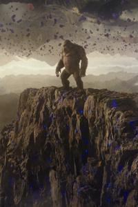 Godzilla Vs Kong Still 2021