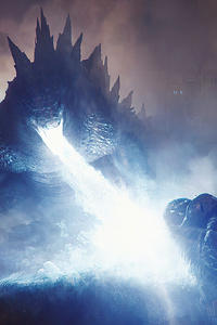 1080x1920 Godzilla Vs Kong