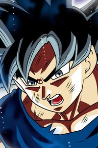 1242x2688 Goku 4k