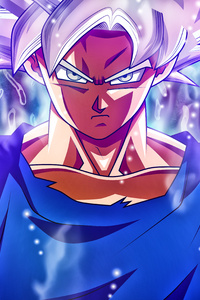 720x1280 Goku Mastered Ultra Instinct 5k