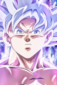 Goku Mastered Ultra Instinct