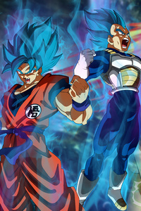 720x1280 Goku Vegeta Dragon Ball Super 5k