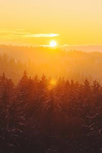 540x960 Golden Hour Foggy Landscape 4k