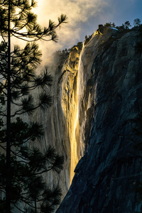 1440x2560 Golden State Yosemite National Park 4k