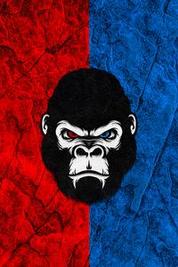 Gorilla Red Blue Minimal 5k