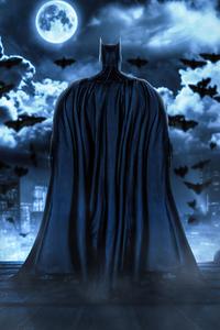 1080x1920 Gotham Knight 4k
