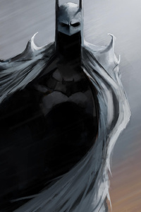 1080x2280 Gotham Knight Batman