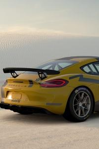 Gran Turismo Sport Porsche Cayman GT4