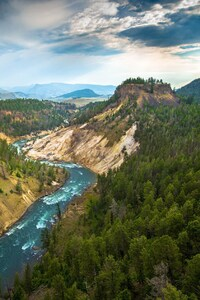 480x800 Grand Canyon Of The Yellowstone