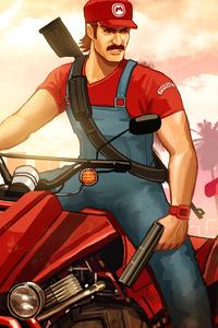 Grand Theft Auto Mario Kat