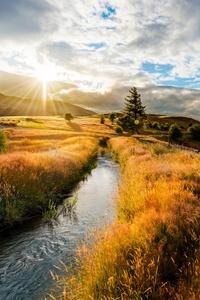 1080x2160 Grass Hill Sunset Summer Field