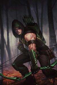 1440x2560 Green Arrow Dc Comics