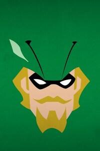 1440x2560 Green Arrow Minimalism