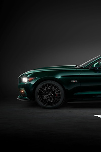 320x568 Green Ford Mustang