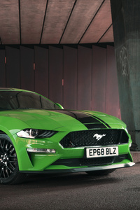 540x960 Green Ford Mustang GT Fastback 2019