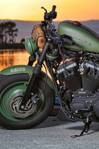 1440x2560 Green Harley Davidson 4k