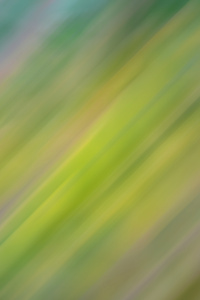 Green Motion Abstract 5k