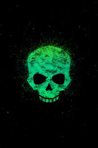 1242x2688 Green Skull 4k