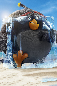 240x320 Grey The Angry Birds Movie 2 2019