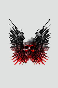 Guns And Skull