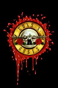 1440x2960 Guns N Roses Dark Minimal 4k