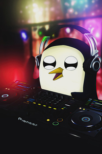 320x480 Gunter Playing Dj