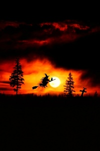 Halloween Witch Fantasy