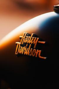 Harley Davidson Logo Bike