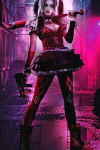 Harley Quinn4kart