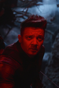Hawkeye In Avengers Endgame