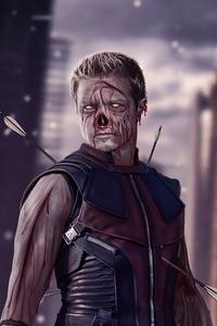 640x960 Hawkeye X Zombie What If