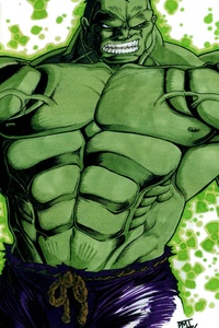1440x2560 Hero 2 The Hulk Colored